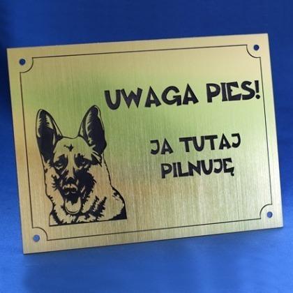 Grawerowana tabliczka UWAGA PIES ostrzegawcza